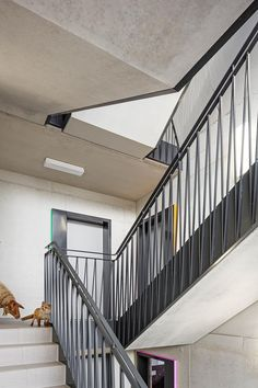 Gallery - Student Residence in Kamp-Lintfort / bob-architecktur - 3