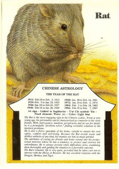Zodiac Unlimited Chinese astrology postcard: Rat