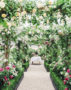 Garden inspiration with an inside look at the 2017 Chelsea flower show in London.
