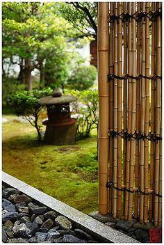 衡梅院の特別拝観 | Special opening of Kobai-in temple in Kyoto... Mo… | Flickr