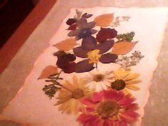cuadros con hojas y flores secas - Buscar con Google