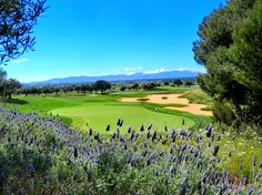 Hole 15, Golf Son Gual Mallorca