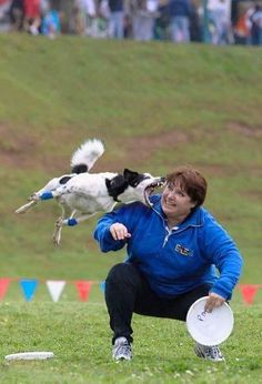 frisbee dog - This is the scariest picture ever.