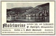 Original-Werbung/ Anzeige 1904 - WEINE / MOSELWEINE / SPIEGEL - CARDEN AN DER MOSEL -  ca. 160 x 110 mm