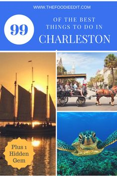 best dating over 50 blogs in charleston