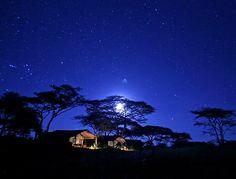 Safari tent camp under the stars