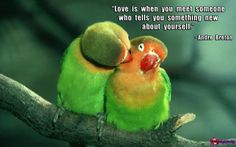 """""""Love is when you meet someone who tells you something new about yourself."""" ~Andre Breton"""