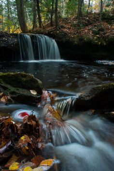 Scribner Brook, New Brunswick, Canada via Darlene Mclean Visit Canada, O Canada, Canada Travel, New Brunswick Canada, Discover Canada, Nature View, World Pictures, Prince Edward Island, Beautiful Waterfalls