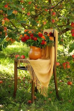~Fall Arrangement~  What a beautiful eye this photographer has!