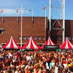 Qday festival is aan!!!