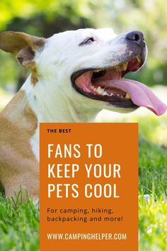Make sure your next outdoor trip is a comfortable one with these best camping fans. #camping#outdoors#outdoorgear#fans#summer Camping Outdoors, Outdoor Camping, Outdoor Fans, Portable Fan, Cool Tents, Camping Lanterns, Camping Essentials, Stay Cool, Camping