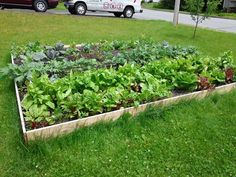 Front lawn garden beds - in two easy versions