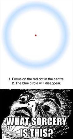 Funny pictures about Red dot optical illusion. Oh, and cool pics about Red dot optical illusion. Also, Red dot optical illusion photos. Cool Optical Illusions, Illusions Mind, Funny Illusions, Art Optical, Awesome Illusions, Optical Illusions Brain Teasers, Funny Mind Tricks, Cool Mind Tricks, Eye Tricks