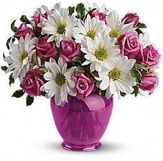 "Pink Daisy Delight    Fresh and fabulous, this stylish blend of white daisies and pink roses in a fuchsia ginger jar will brighten any occasion. The charming bouquet includes pink spray roses and white daisy spray chrysanthemums accented with fresh greenery.  Delivered in a fuchsia ginger jar.  Approximately 12"" W x 11 1/2"" H.  This item is hand-arranged and delivered by a Teleflora florist.  All prices in U.S. Dollars.  Standard:  TEV07-1A  Deluxe:  TEV07-1B  Premium:  TEV07-1C"