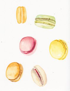 Macaroon drawings- Kate Harvey, Food Illustrations