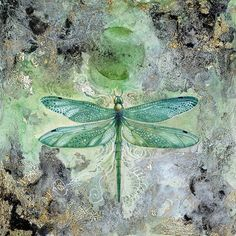 """Shop for iCanvas """"Dragonfly V"""" by Stephanie Law. Get free delivery On EVERYTHING* Overstock - Your Online Art Gallery Store! Dragonfly Painting, Dragonfly Art, Dragonfly Images, Painting Frames, Painting Prints, Canvas Artwork, Canvas Prints, Wassily Kandinsky Paintings, Beautiful Bugs"""