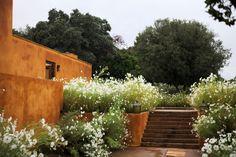 Caruncho Garden & Architecture - Casa Caruncho - Temporal Cosmic Garden