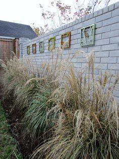 Miscanthus sinensis 'Adagio' from Blog Ravenscourt Gardens