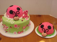 ladybug smash cake for Lily to go with her caterpillar cake! Can't wait to have a bug themed first birthday :)