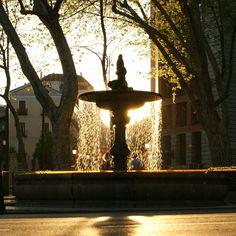 Puesta de sol en el Paseo del Prado Madrid