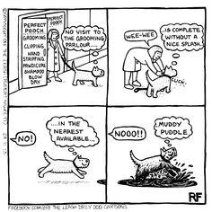 💕 Sunday Funny 😆  #offleash #Comics #Farside #Sundayfunday  #Sundayfunny #merryjaneandthor Secret Life Of Dogs, Secret Life Of Rabbits, Dog Quotes Funny, Funny Dogs, Funny Animals, Unique Dog Collars, Dog Comics, Cartoon Dog, Dog Cartoons