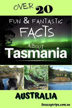 Travel Reviews, Travel Articles, Travel Tips, Travel Destinations, Travel Guides, Hiking Tours, New Zealand Travel, Fascinating Facts, Tasmania