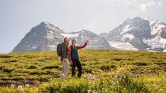 Der Bergfrühling erwacht und das Dreigestirn glänzt wunderschön in Weiss. Der Kontrast von Blumen in allen Farben und weissen Bergspitzen lässt einen in der Jungfrau Region staunen. Die Skis tauschen wir gegen Wanderschuhe, Sonnenbrille montieren und los gehts!