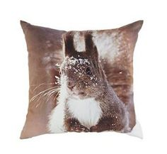 squirrel cushion #woodland  #trends #animals #cute #winter #home #yourhomemagazine #decorating #fox #owl #squirrel
