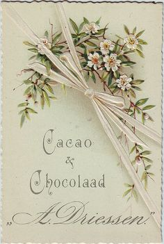cacao driessen flower spray and white bow | Flickr - Photo Sharing!