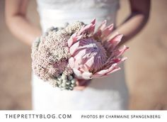 Pink Protea King and Pink Riceflower