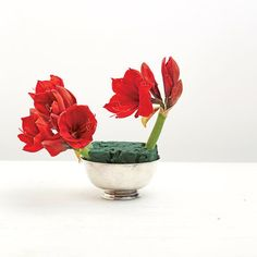 Red Punch Arrangement: Anchor the arrangement with amaryllis or another large flower that will act as a focal point. Select blooms in a range of reds to give dimension to this monochromatic look.