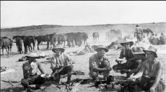 World War I : Mid-day meal Australian soldiers in their way to fight in Palestine 1917 ,Sinai desert Ww1 History, Military History, Anzac Soldiers, Ww1 Pictures, History Teachers, World War One, Wwi, Armed Forces, First Photo