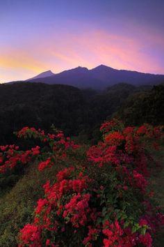 Mount Rijani, Bali.