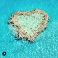Heart Island in Great barrier reef @greatbarrierreefqld The biggest reef of the world in @queensland  ----------------------------------------- >> #my__australia << #australia #austria #island #queensland #greatbarrierreef #sun #heart #chillig #relax #australien by my__australia http://ift.tt/1UokkV2