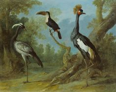 """Painting - Jean-Baptiste Oudry's paintings of Louis XV's menagerie at Versailles - """"Two cranes and a Toucan"""" 1745 - Staatlichen Museum Schwerin - Germany"""
