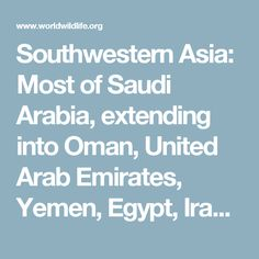 Southwestern Asia: Most of Saudi Arabia, extending into Oman, United Arab Emirates, Yemen, Egypt, Iraq, Jordan, and Syria | Ecoregions | WWF
