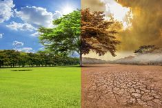 Ny FN-rapport: Det er stadig muligt at holde den globale opvarmning på Greenhouse Effect, Greenhouse Gases, Ocean Acidification, Ozone Layer, Oil Refinery, Sea Level Rise, World Economic Forum, Top Soil, Hu Ge