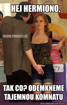 Hermione Granger, Emma Watson, Harry Potter, Memes, Internet, Meme