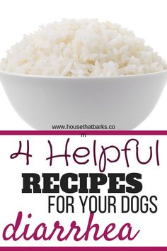 homemade diarrhea stomach recipes these upset great dogs food help work have your does dog 4 Recipes for Dogs Diarrhea or Upset Stomach Does your dog have diarrhea These recipes work great You can find Dog food recipes and more on our website Easy Dog Treat Recipes, Homemade Dog Treats, Healthy Dog Treats, Dog Food Recipes, Pet Treats, Healthy Recipes, Dog Diarrhea Remedy, Dog Has Diarrhea, Dog Upset Stomach