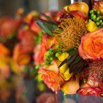 Amy & Chad's Orange and Purple Fall Wedding