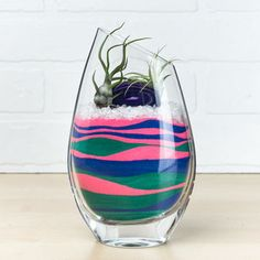 This product is currently unavailable. Buy the Layered Sand Art Air Plant Terrarium for yourself or as a gift for a friend or coworker. Find more glass terrariums and succulent pots at Apollo Box! Terrariums Diy, Air Plant Terrarium, Garden Terrarium, Terrarium Workshop, Plants In Jars, Air Plants, Cactus Plants, Succulent Pots, Succulents Garden