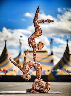 overenthusiastic about the circus arts. always taking cirque du soleil gif requests. Circus Art, Circus Theme, Vintage Circus, Vintage Art, Steampunk Circus, Circus Aesthetic, Amazing Flexibility, The Hierophant, Exotic Dance