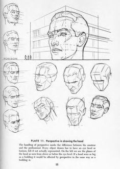 Figure Drawing Head and Hands by Andrew Loomis Drawing Studies, Drawing Skills, Drawing Lessons, Drawing Techniques, Life Drawing, Figure Drawing, Drawing Tutorials, Drawing Tips, Head Anatomy