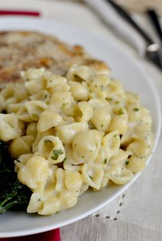 Creamy Garlic Shells. 8oz mini shells pasta 1 Tablespoon extra virgin olive oil 1 Tablespoon butter 2 garlic cloves, minced 2 Tablespoons flour 3/4 cup chicken broth 3/4 cup milk (I used skim) salt & pepper 1/4 cup grated parmesan cheese 1/2 teaspoon garlic powder (not garlic salt) 2 teaspoons parsley flakes