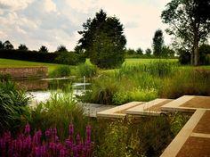 Garden by Thomas Hoblyn MSGD. Photo: Allan Pollok-Morris