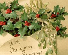 Today I'm sharing this beautiful Vintage Holly Image! Shown above is a gorgeous Vintage Postcard, featuring a paper Envelope stuffed full of Holly and Mistletoe!