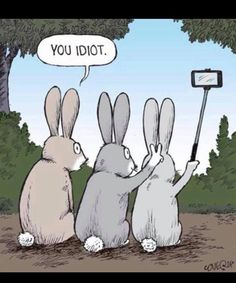 Humor Discover 15 Ideas Funny Cartoons Pictures Hilarious Jokes For 2019 Stupid Funny Memes Funny Puns Funny Relatable Memes Haha Funny Hilarious Jokes Funny Humor Memes Humor Cute Funny Cartoons Funny Stuff Crazy Funny Memes, Really Funny Memes, Funny Puns, Stupid Memes, Funny Relatable Memes, Haha Funny, Hilarious Jokes, Funny Humor, Funny Stuff