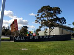 Guest Article: Work Experience at Museum Victoria