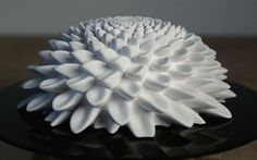 3D-Printed Fibonacci sculptures come to life in mind-blowing optical illusion