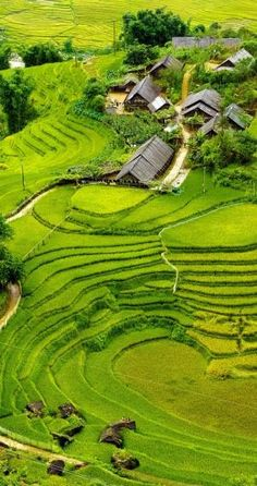 Rice fields on terraced of Mu Cang Chai, YenBai, Vietnam. by proteamundi